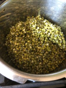 mung beans are in an Instant Pot. They look like a vibrant green with bits of white.