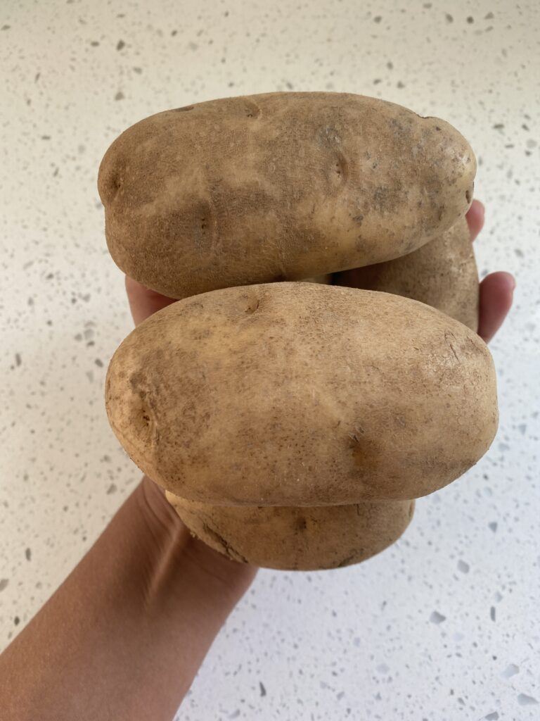 a hand holding russet potatoes